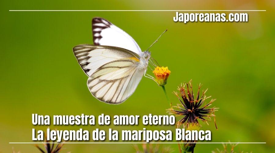 La leyenda de la mariposa blanca